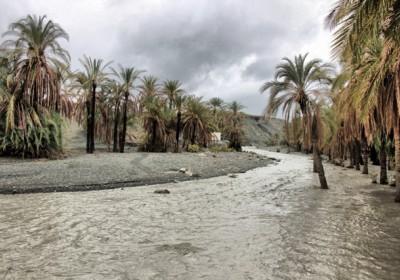 خسارت سنگین سیلاب به کشاورزان بشاگرد/کاهش۳۰ درصدی محصولات کشاورزی نسبت به سال قبل