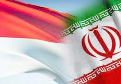 اندونزی خواستار توسعه همکاری های نفت و گاز با ایران است