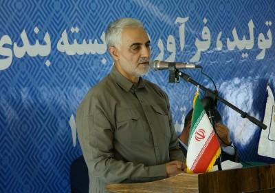 سردار سلیمانی : تحریمها فرصتی برای فاصله گرفتن از درآمدهای نفتی