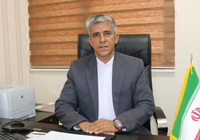 پیش بینی افزایش تولید پیاز طرح استمرار در جنوب کرمان