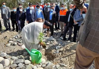آئین روز درختکاری در شهرستان جیرفت برگزار شد.